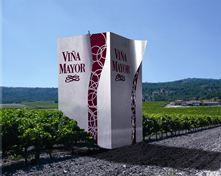 Bodegas-Viña-Mayor