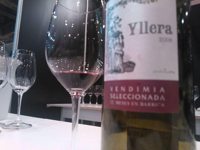 Yllera-2008